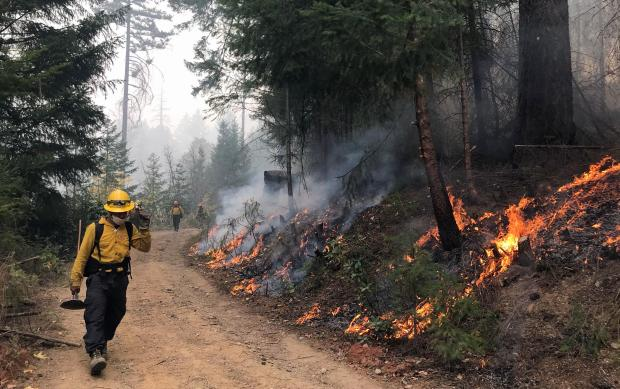 A firefighter holding a McLeod tool walks down a road with fire burning on the right hand side of the picture.