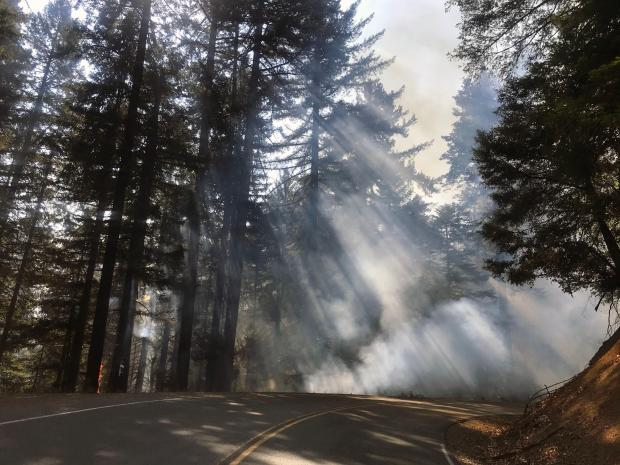 Smoke is seen drifting over a paved road, with shafts of sunlight dissecting it.