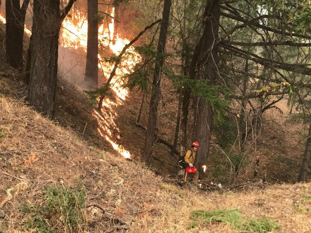 A firefighter with a drip torch is seen in the distance with burning grass nearby.