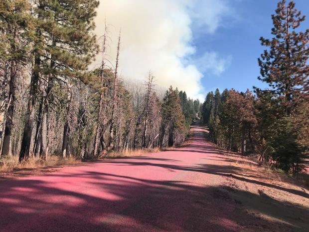 A dirt road running through a forest has a red tint to it from a recent retardant drop. Smoke from the fire can be seen in the background.