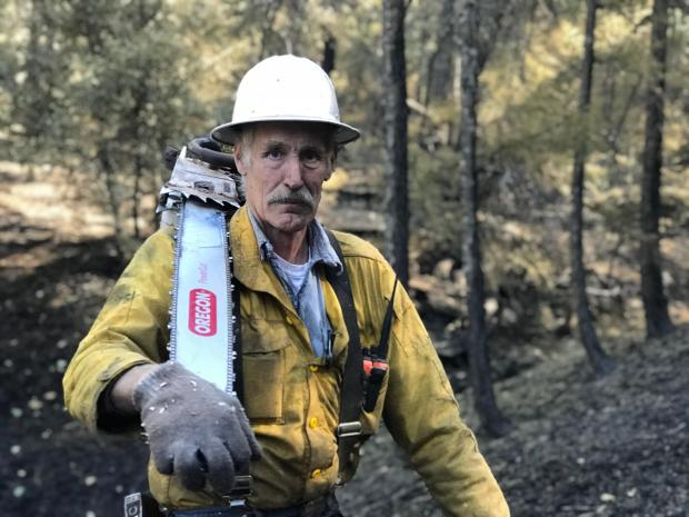 A sawyer is pictured wearing his hardhat and carrying his chainsaw on his shoulder.