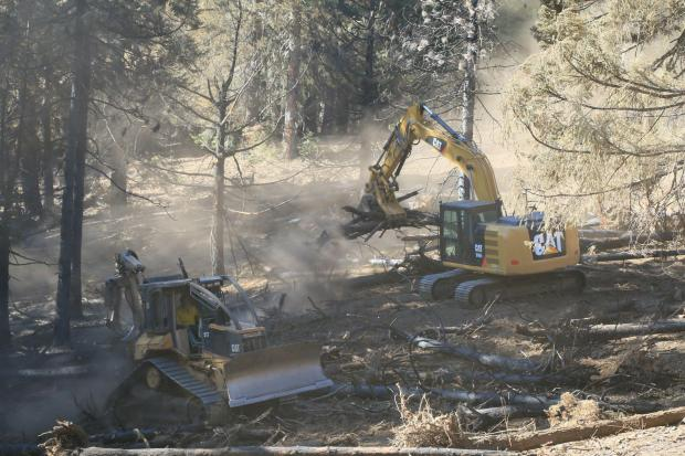 A bulldozer and excavator move logs.
