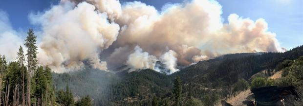 September 8, 2020 Hopkins Fire smoke along the ridge tops looking east from Penny Glades up the South Fork Trinity River
