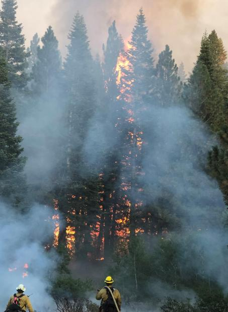 Firing operations in Division E with smoke on the W-5 Cold Springs fire.