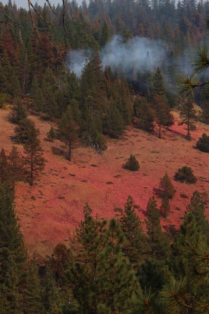 West Side of Sheep Fire
