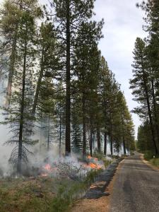 Porcupine Prescribed Fire project October 15, 2019 (photo taken by Anna Wright)