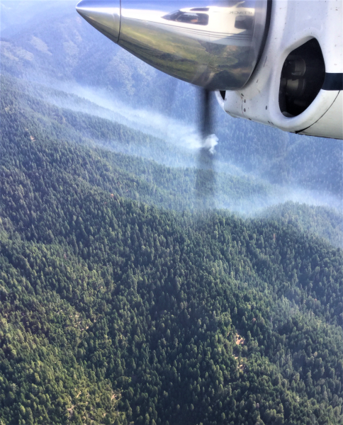 Aerial view of the Butcher Fire showing smoke hovering in the trees from 8/18/2020
