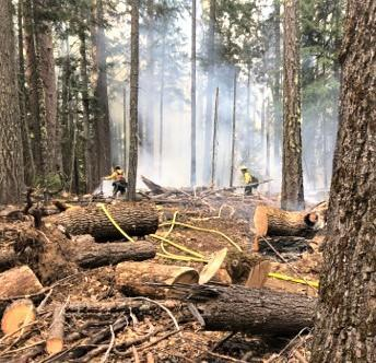 Image of the South Fire with firefighters working in the forest 8/18/2020