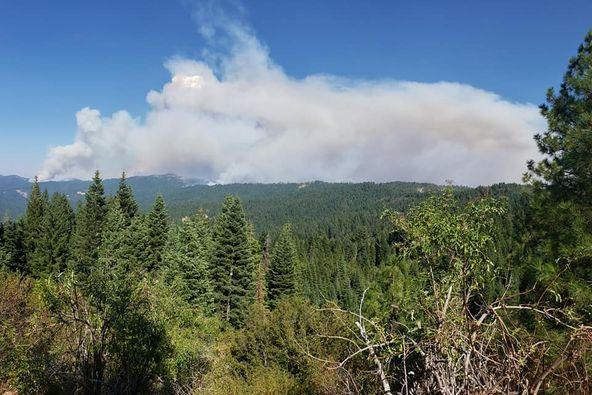 image photo of a View of Hopkins fire from Mad River Ranger Station Sept 8