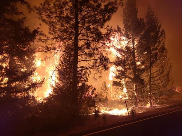 image Hopkins Fire  heavy fire in the trees at night 9.9.20 near Mad River Ranger District