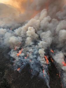 Aerial Image of McFarland Fire, August 25, 2021