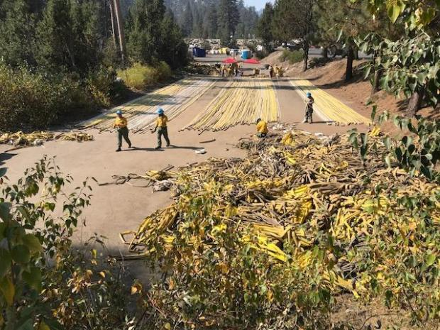 View of piles and lines of yellow hose. Youth crew rolling used hose.
