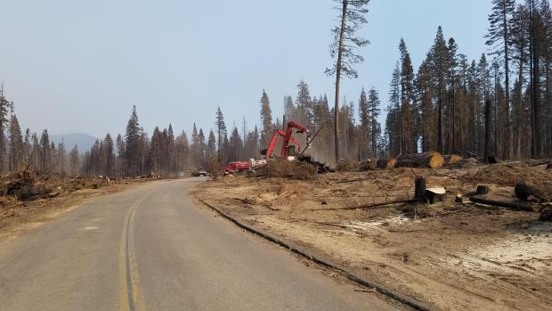 While active firefighting is taking place in the northern and northeastern sections of the fire, active suppression repair and rehabilitation as well as some salvage logging is taking place in other parts of the fire area.