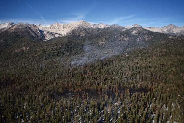 Monitoring the North End of the Fire