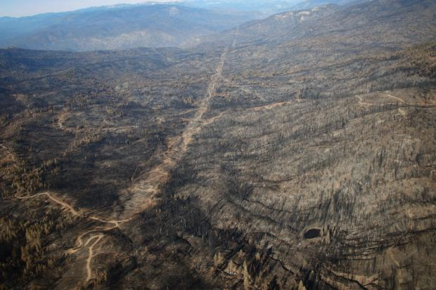 Burned area south of Shaver