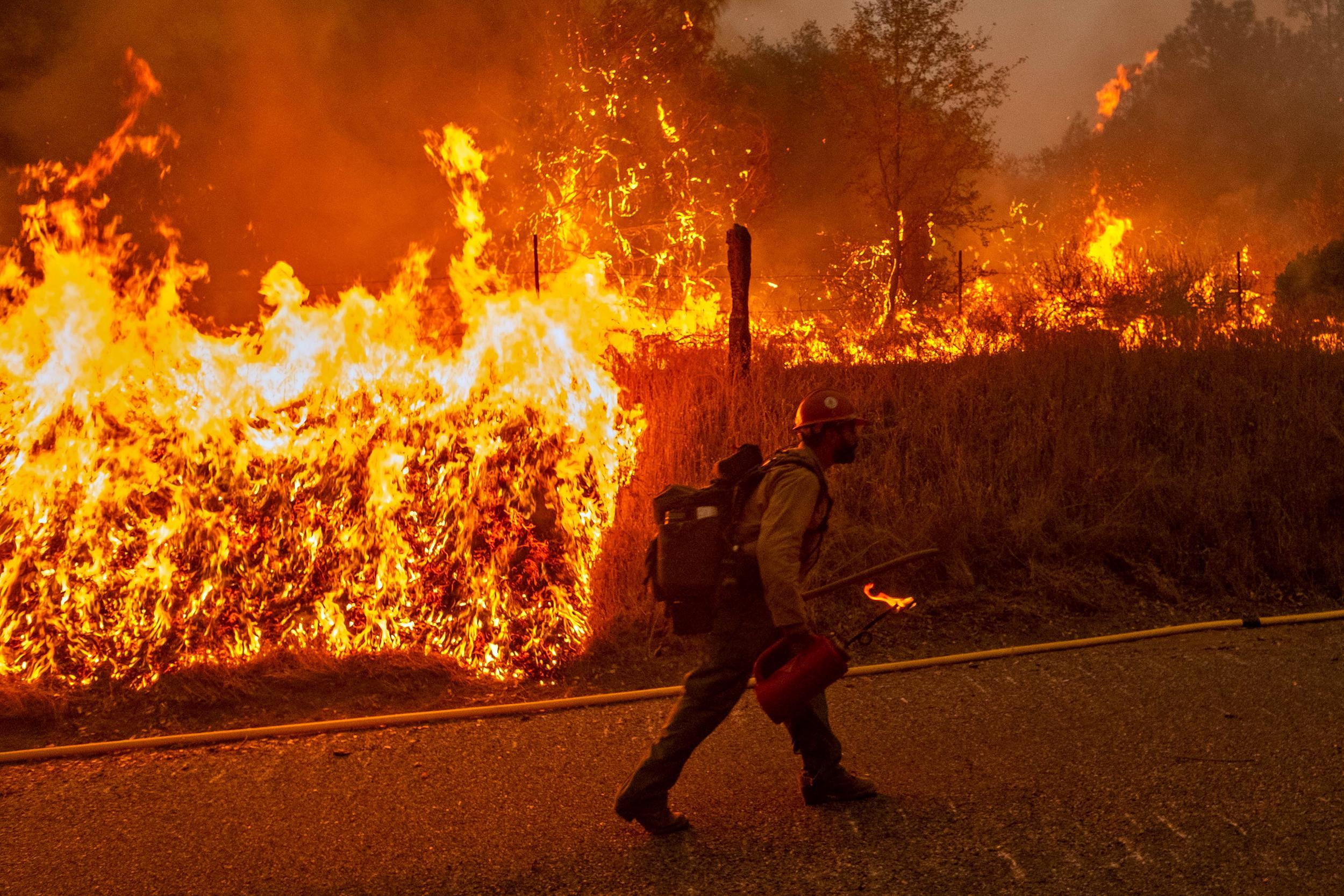 Firefighter walking along road edge with drip torch. Flames in background from back-burning.