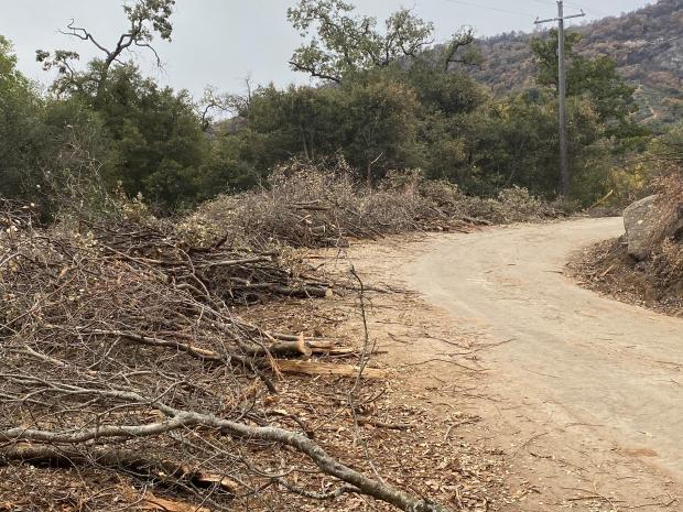 Before fire suppression repair work, chipping of roadside material needed on Nov. 18, 2020