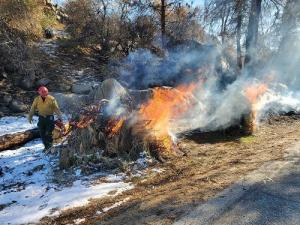 Firefighter utilizing drip torch to light piles