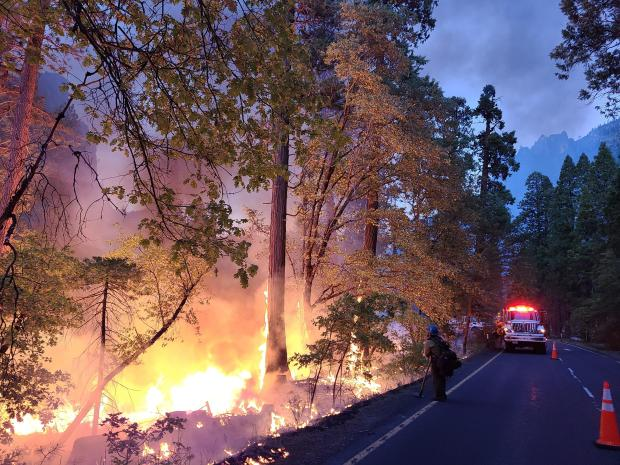 Fire burns on the left side with a road on the right featuring a fire engine on the road.
