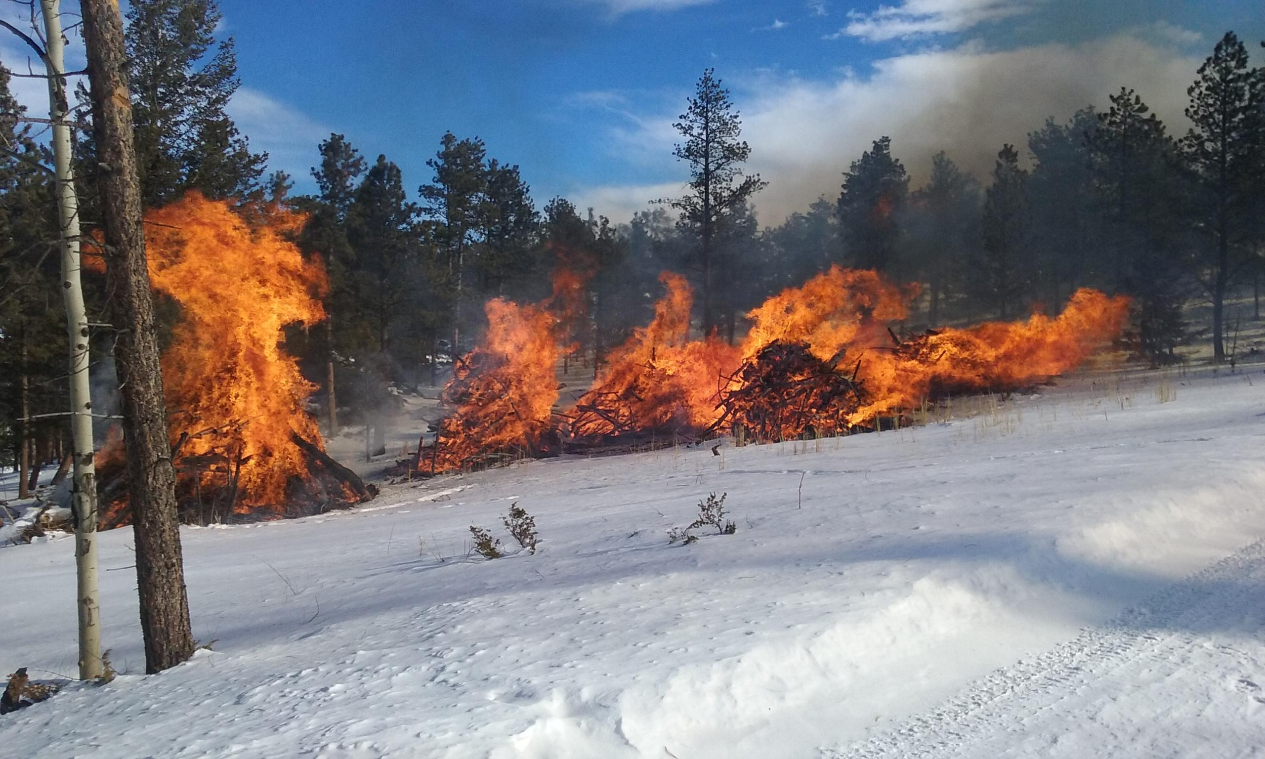 Pile burning in the Creedmore Lakes area north of Red Feather Lakes on January 12, 2016.