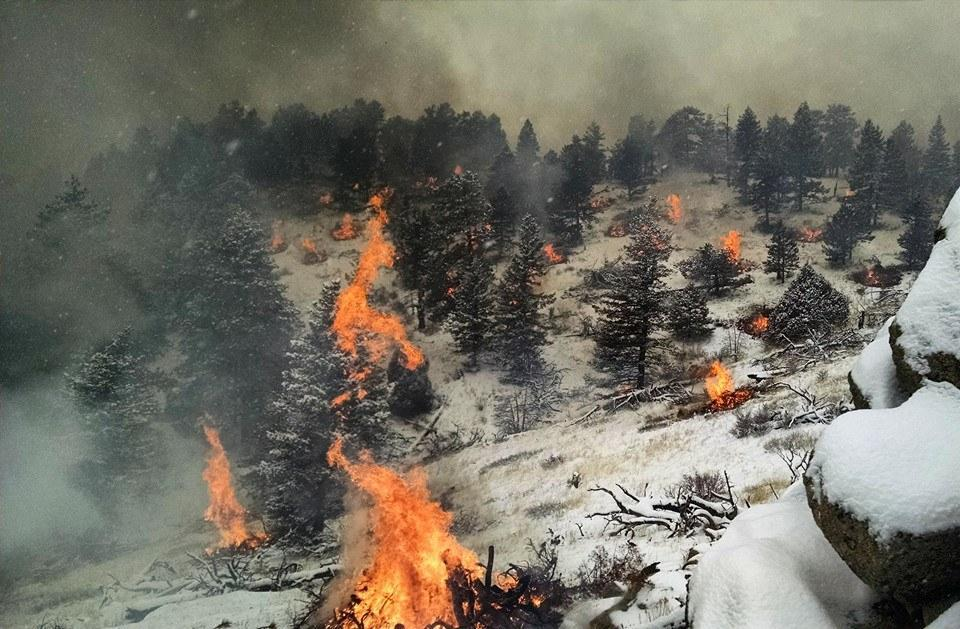 smoke and piles burning in snow