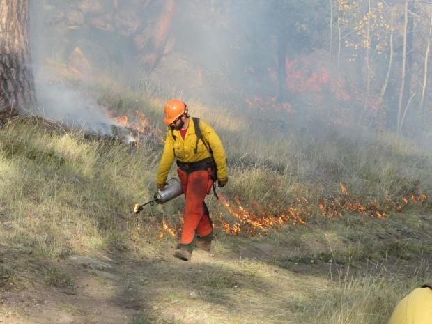 This photo shows a firefighter igniting the Pingree Hill Prescribed Burn with a drip torch.
