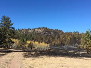 Morning view of the Red Feather North Prescribed Burn