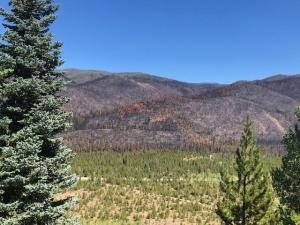 Williams Fork Fire seen from CO Road 304 on 9-4-20