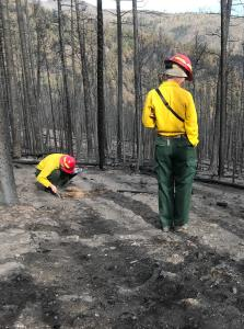 Two people in yellow shirts and green pants look at the burned soil in a blackened landscape.