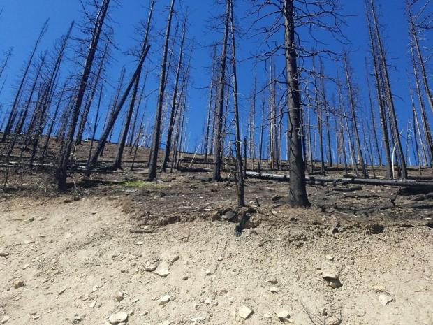 Severely burned slopes present substantial risk, especially during heavy rain events.