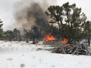 Burning piles of vegetation surrounded by snow