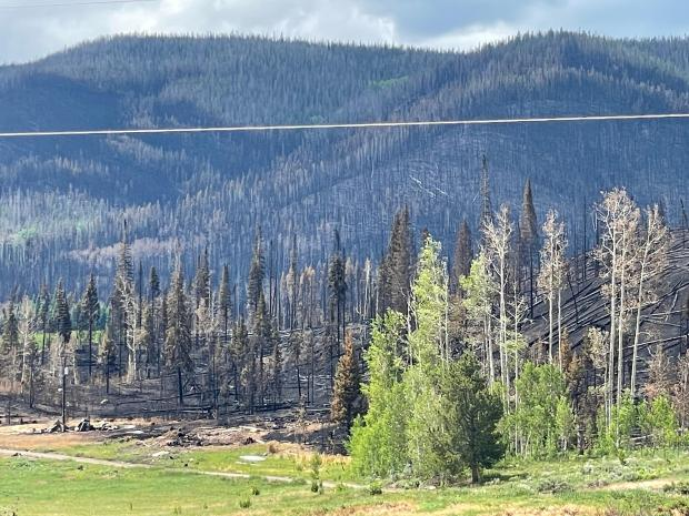 The area in and around the Muddy Slide fire is choked with beetle-killed lodgepole pine, providing a fuel bed large enough for a long duration fire.