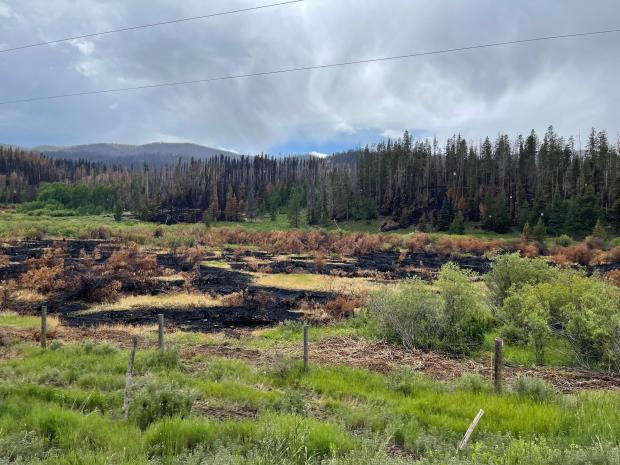 The Muddy Slide fire scorched the ground.