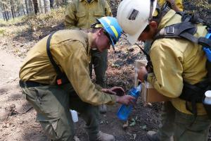 A firefighter provides water to her colleague on the Vosburg Pike Fire on June 17, 2021.