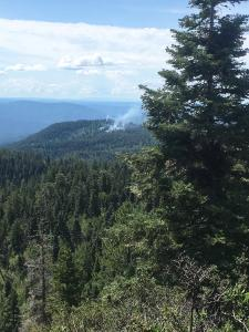 A small area of smoke rises near the top of a heavily forested mountain.