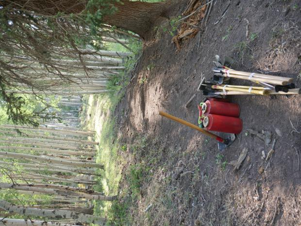Tools lay stacked and ready along a fire line through an aspen grove.