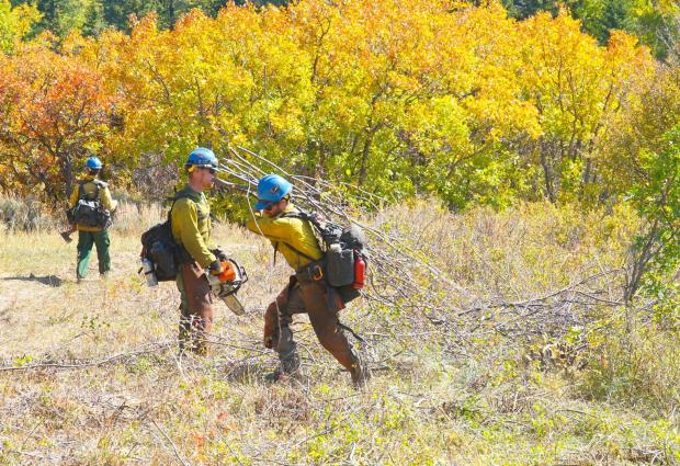 Two Firefighters with tools and in fire clothing, green pants and yellow shirts, blue helmets work in an open field digging out fireline with mountains behind.