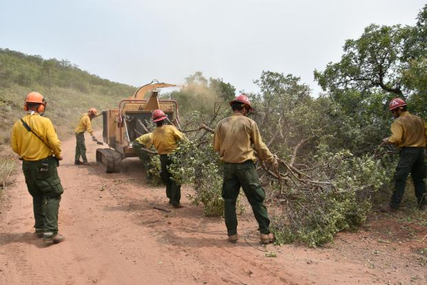 Grizzly Creek Fire Chipping Operations 8.23.20 at Lookout Mountain Road