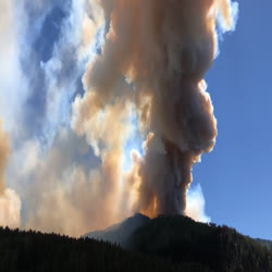A column of smoke rises from the Sylvan Fire
