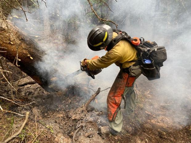 a firefighter cuts a burning tree with a chainsaw