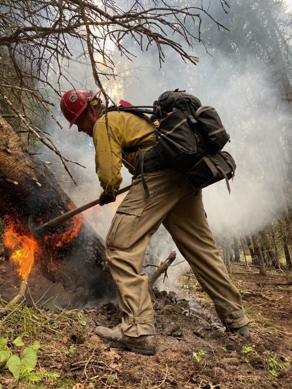 a firefighter tries to extinguish fire at base of tree