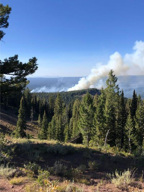 Boone Fire activity 08.28.2019