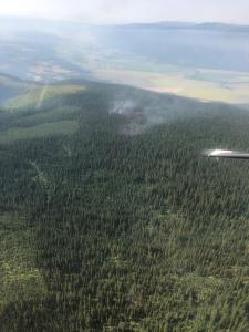 Hall Mountain Fire, Aerial view looking south