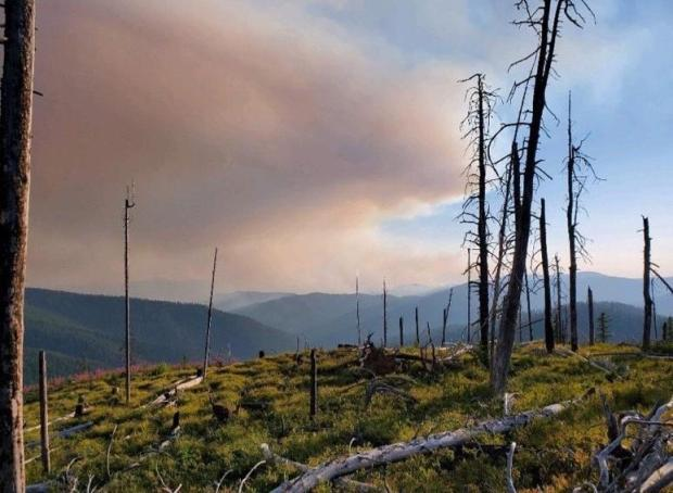 Stateline Fire on July 29, 2021 at 1530 in Bear Canyon with Smoke in Front of Mountain