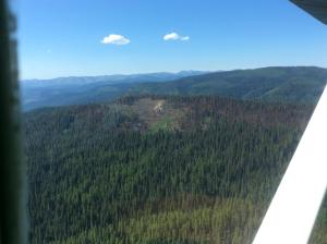 Aerial image shows a small amount of smoke rising from trees into the blue sky.