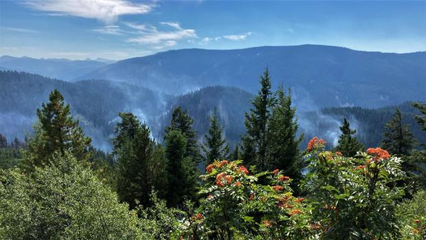 Beaver Fire, on afternoon of 9/3/2020