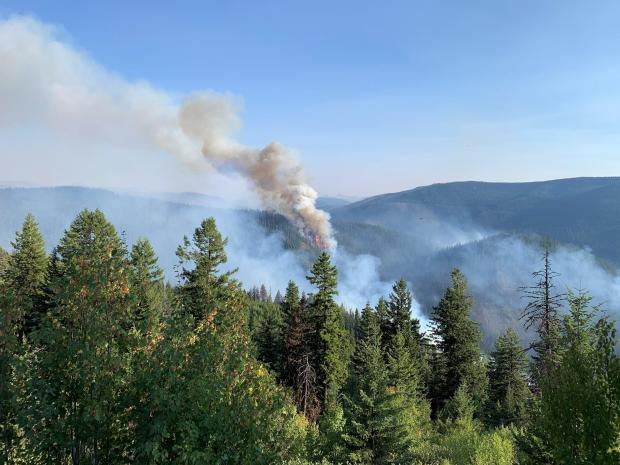 tree torching on Beaver Fire 9/4/2020