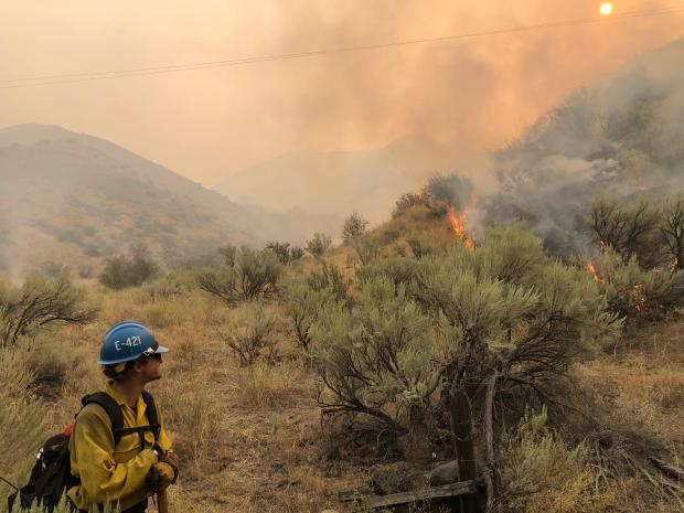 Firefighter standing in sagebrush on the hill with smoke in the background