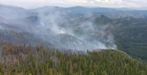 In this aerial view, wispy columns of white smoke rise from a forested mountainside.