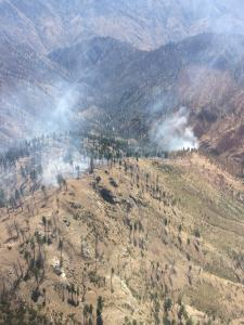 Cove Creek Fire August 18